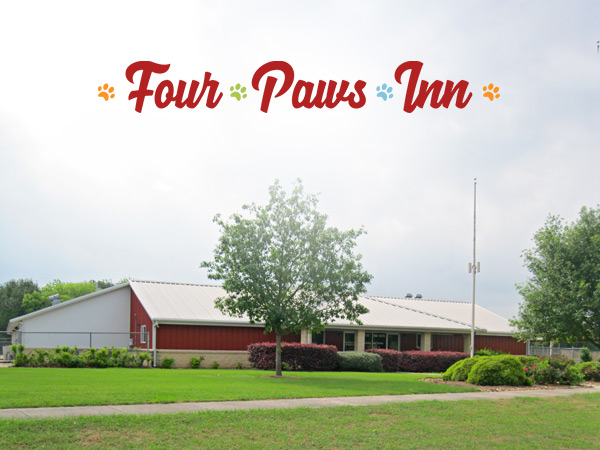 Four Paws Inn Facility